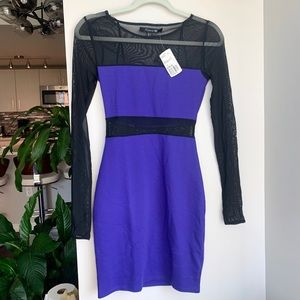 Forever 21 Mesh Panel Purple Bodycon Dress